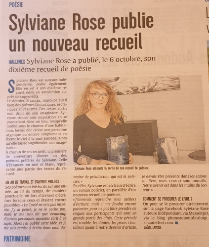 ARTICLE DE PRESSE ECHO DE LA LYS ERRANCES.jpg